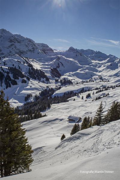 adelboden_winterlandschaft_24.1.2021_0101