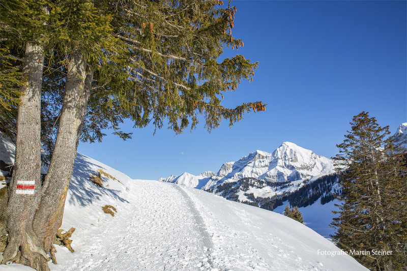 adelboden_winterlandschaft_24.1.2021_0159