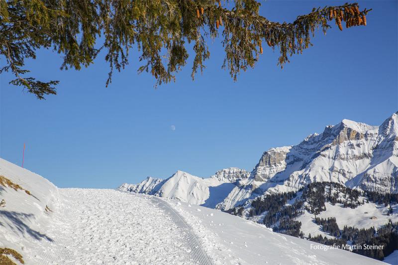 adelboden_winterlandschaft_24.1.2021_0160