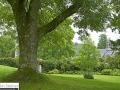 cornwall_8.2008_423.jpg