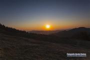 raemisgummen_krokus_sunset_07.04.2020_0235-stm