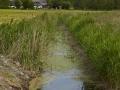 ostsee_juni2012_0902