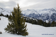 hasliberg_winterwanderung_06.02.2020_00921-wasserzeichen
