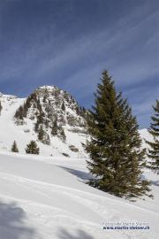 hasliberg_winterwanderung_06.02.2020_01451-wasserzeichen
