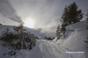 hasliberg_winterwanderung_06_06.02.2020-wasserzeichen