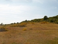 ostsee_hiddensee_pano1