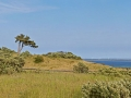 ostsee_hiddensee_pano6