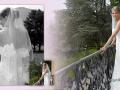 hochzeit_wedding_353