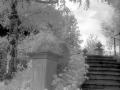 IR_schlosswildegg_treppe2b_10.9.04.jpg