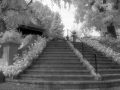 IR_schlosswildegg_treppe_10.9.04.jpg