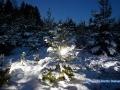 lightpainting_tanne_winter_09.12.2017_27