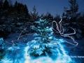 lightpainting_tanne_winter_09.12.2017_31b