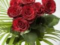 rosen_studio_25.2.2008-0025