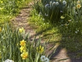 bodensee_28_29.4.2010_230.jpg