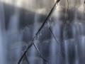 winter_gäu_thal_03.02_bild7_tonemapped