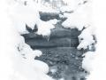 Capturefile: D:\winter_emmental_26.3.07\winter_emmental_26.3.07-0047.CR2 CaptureSN: 530201839.000003 Software: Capture One LE for Windows