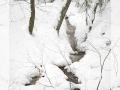 Capturefile: D:\winter_emmental_24.3.07\winter_emmental_24.3.07-0088.CR2 CaptureSN: 530201839.000003 Software: Capture One LE for Windows