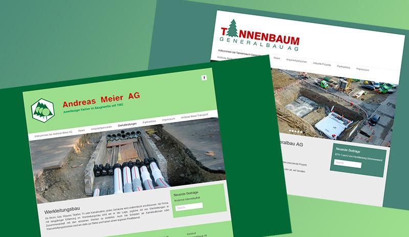 Andreas Meier AG Tannenbaum Generalbau